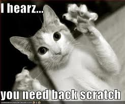 Kitteh Will Scratch Your Back